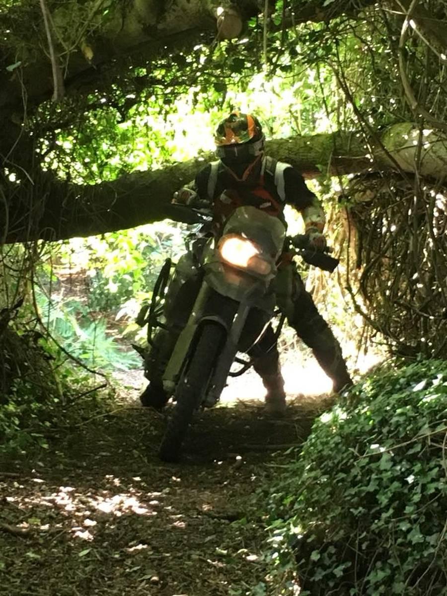 image showing  adventure bikes 1006