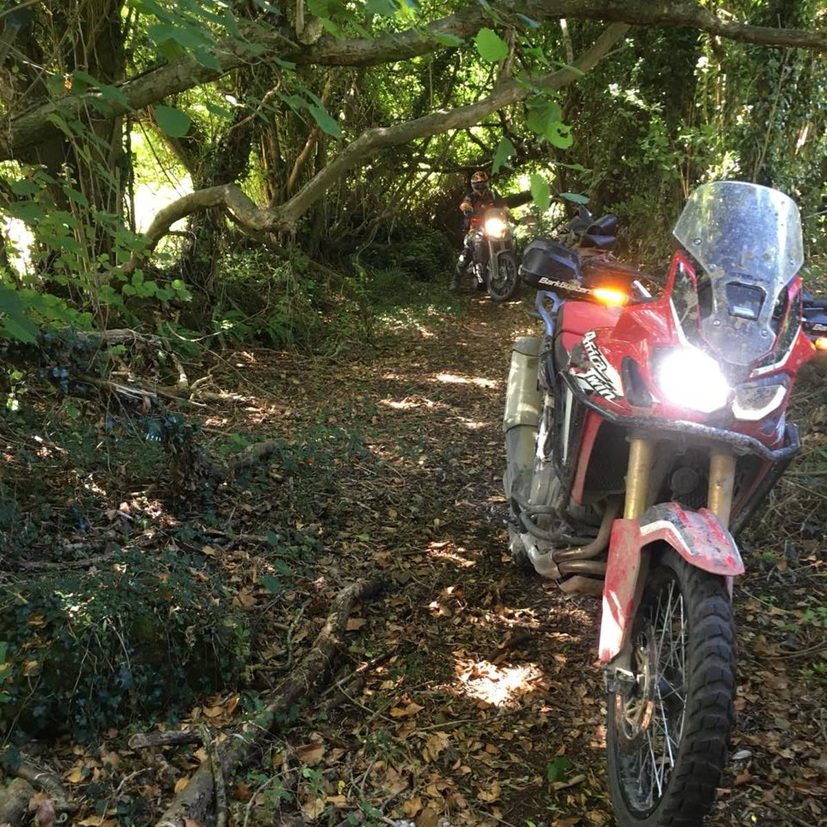 image showing  adventure bikes 1007