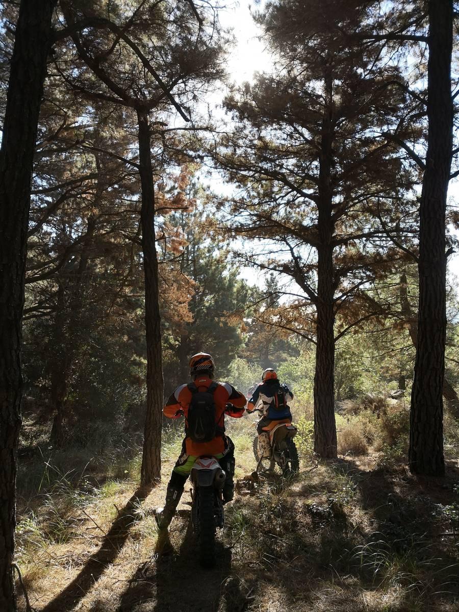 image showing  off road enduro trail bikes 1010